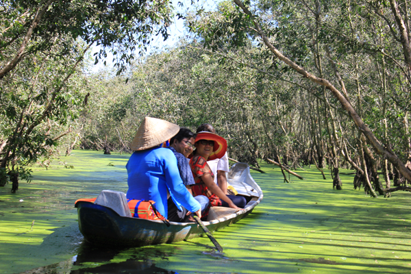 Tra Su Cajuput Forest attracts more visitors to An Giang, travel news, Vietnam guide, Vietnam airlines, Vietnam tour, tour Vietnam, Hanoi, ho chi minh city, Saigon, travelling to Vietnam, Vietnam travelling, Vietnam travel, vn news