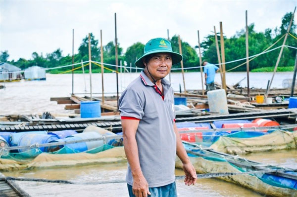 Hau River, river fish, fish-breeding cages, Vietnam economy, Vietnamnet bridge, English news about Vietnam, Vietnam news, news about Vietnam, English news, Vietnamnet news, latest news on Vietnam, Vietnam