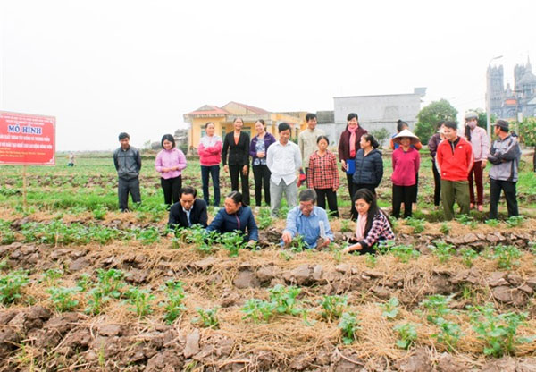 Rural workers, training courses, help farmers professionalize, Vietnam economy, Vietnamnet bridge, English news about Vietnam, Vietnam news, news about Vietnam, English news, Vietnamnet news, latest news on Vietnam, Vietnam