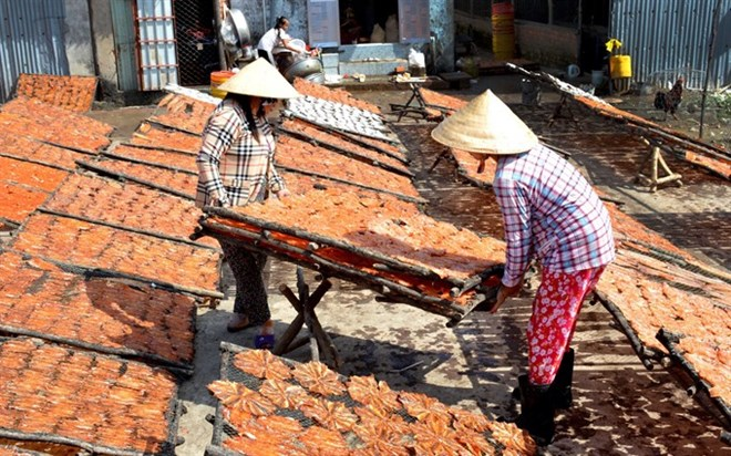 VN farmers prepare special food for lunar New Year, social news, vietnamnet bridge, english news, Vietnam news, news Vietnam, vietnamnet news, Vietnam net news, Vietnam latest news, vn news, Vietnam breaking news