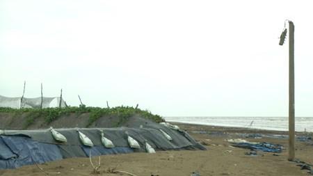 Ben Tre faces serious coast erosion, Vietnam environment, climate change in Vietnam, Vietnam weather, Vietnam climate, pollution in Vietnam, environmental news, sci-tech news, vietnamnet bridge, english news, Vietnam news, news Vietnam, vietnamnet news,