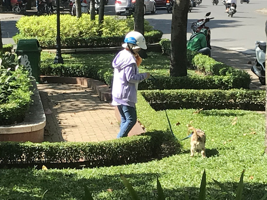Residents oppose pet ban at HCM City apartment buildings, social news, vietnamnet bridge, english news, Vietnam news, news Vietnam, vietnamnet news, Vietnam net news, Vietnam latest news, vn news, Vietnam breaking news