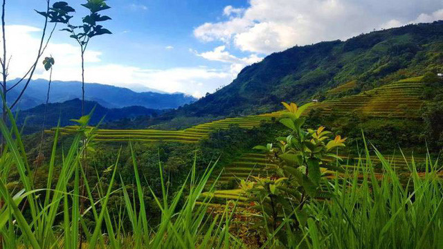 Top Vietnamese adventure travel destinations, travel news, Vietnam guide, Vietnam airlines, Vietnam tour, tour Vietnam, Hanoi, ho chi minh city, Saigon, travelling to Vietnam, Vietnam travelling, Vietnam travel, vn news