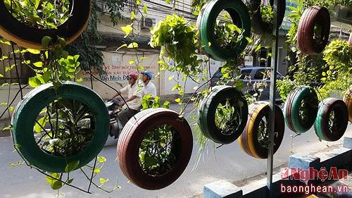 Nghe An man's tyre-made garden