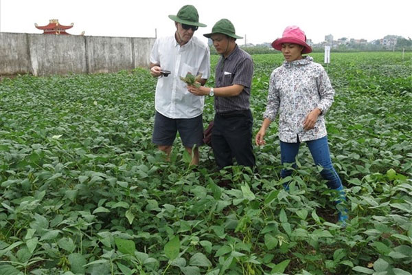 Agriculture industry, application of nuclear technology, Vietnam economy, Vietnamnet bridge, English news about Vietnam, Vietnam news, news about Vietnam, English news, Vietnamnet news, latest news on Vietnam, Vietnam
