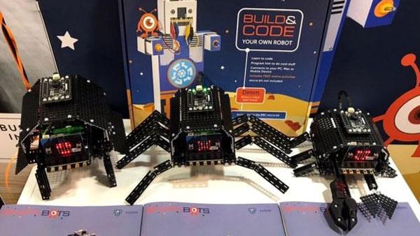 CES tech show, robots, gimmick