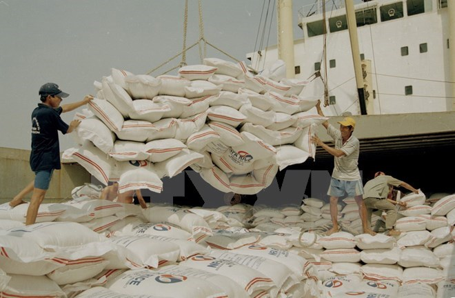 Indonesia to import rice from Vietnam to curb price hikes, vietnam economy, business news, vn news, vietnamnet bridge, english news, Vietnam news, news Vietnam, vietnamnet news, vn news, Vietnam net news, Vietnam latest news, Vietnam breaking news