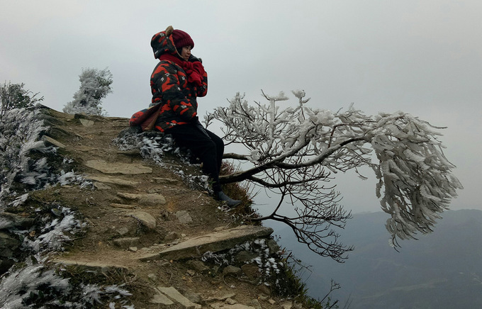 Frost covers Mau Son Mountain due to cold, social news, vietnamnet bridge, english news, Vietnam news, news Vietnam, vietnamnet news, Vietnam net news, Vietnam latest news, vn news, Vietnam breaking news