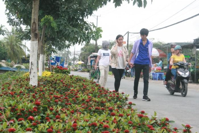 Sa Dec Flower Village in full bloom, travel news, Vietnam guide, Vietnam airlines, Vietnam tour, tour Vietnam, Hanoi, ho chi minh city, Saigon, travelling to Vietnam, Vietnam travelling, Vietnam travel, vn news