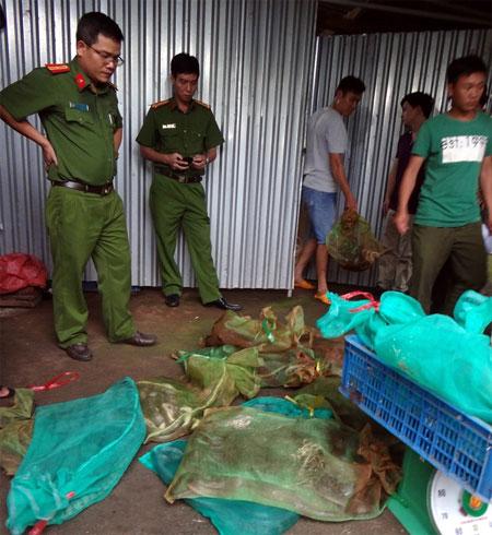 Wildlife protection, Vietnam economy, Vietnamnet bridge, English news about Vietnam, Vietnam news, news about Vietnam, English news, Vietnamnet news, latest news on Vietnam, Vietnam