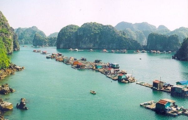Cua Van fishing village an attractive destination in Ha Long Bay, travel news, Vietnam guide, Vietnam airlines, Vietnam tour, tour Vietnam, Hanoi, ho chi minh city, Saigon, travelling to Vietnam, Vietnam travelling, Vietnam travel, vn news