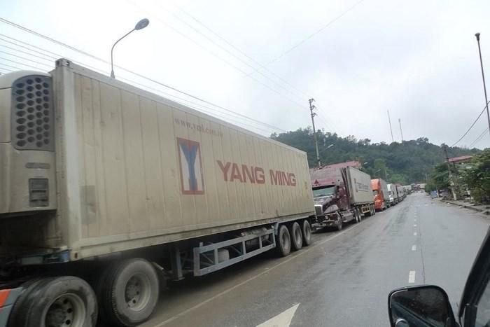 Fruit trucks stuck at Chinese border, vietnam economy, business news, vn news, vietnamnet bridge, english news, Vietnam news, news Vietnam, vietnamnet news, vn news, Vietnam net news, Vietnam latest news, Vietnam breaking news