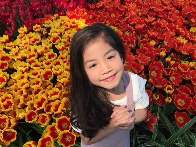 Vietnam's largest tulip festival in Vinpearl Nha Trang, travel news, Vietnam guide, Vietnam airlines, Vietnam tour, tour Vietnam, Hanoi, ho chi minh city, Saigon, travelling to Vietnam, Vietnam travelling, Vietnam travel, vn news