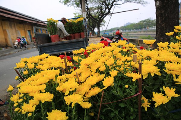 Binh Dong Wharf immersed in festive atmosphere of Tet, travel news, Vietnam guide, Vietnam airlines, Vietnam tour, tour Vietnam, Hanoi, ho chi minh city, Saigon, travelling to Vietnam, Vietnam travelling, Vietnam travel, vn news