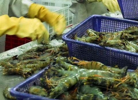 Saudi Arabia to temporarily suspend Vietnamese fish imports, vietnam economy, business news, vn news, vietnamnet bridge, english news, Vietnam news, news Vietnam, vietnamnet news, vn news, Vietnam net news, Vietnam latest news, Vietnam breaking news