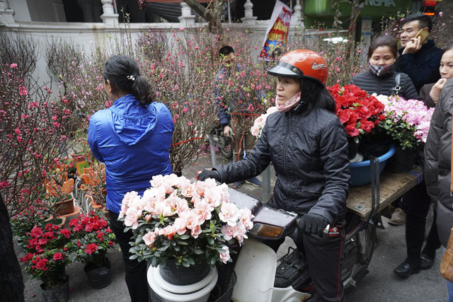 Flowers colour Hanoi's streets as Tet nears, entertainment events, entertainment news, entertainment activities, what's on, Vietnam culture, Vietnam tradition, vn news, Vietnam beauty, news Vietnam, Vietnam news, Vietnam net news, vietnamnet news, vietnam