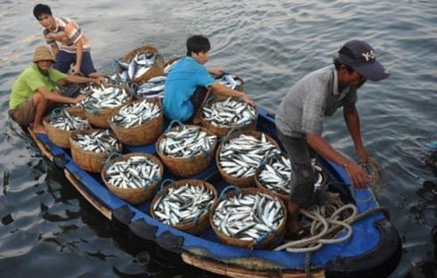 Cooperation in East Sea fisheries management, environmental protection