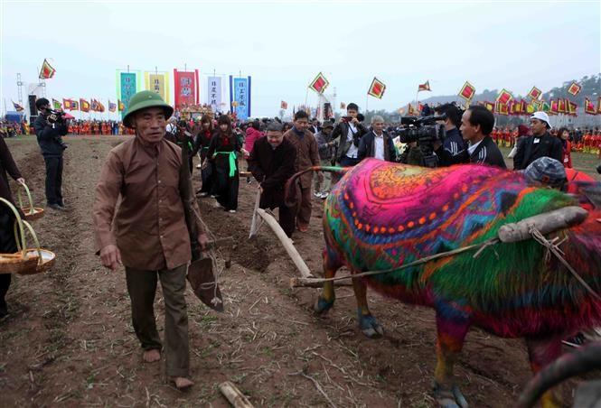 Doi Son ploughing festival prays for bumper crops, entertainment events, entertainment news, entertainment activities, what's on, Vietnam culture, Vietnam tradition, vn news, Vietnam beauty, news Vietnam, Vietnam news, Vietnam net news, vietnamnet news