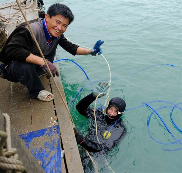 Diver teams, risk life, catch seafood, Co To Island, Vietnam economy, Vietnamnet bridge, English news about Vietnam, Vietnam news, news about Vietnam, English news, Vietnamnet news, latest news on Vietnam, Vietnam