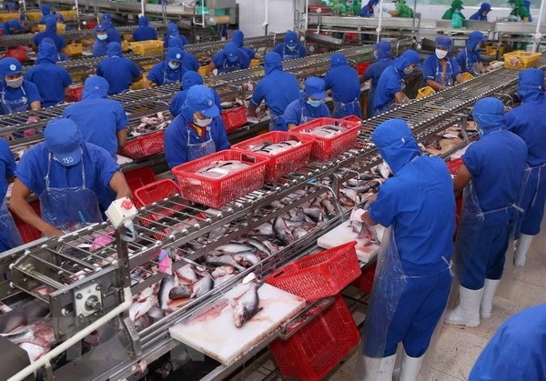 Exports of tra fish to UK increase, Ministry works to stabilise market following Tet, RON 95 petrol price drops by 400 VND per litre, Japanese group builds auto parts factory in Thai Binh