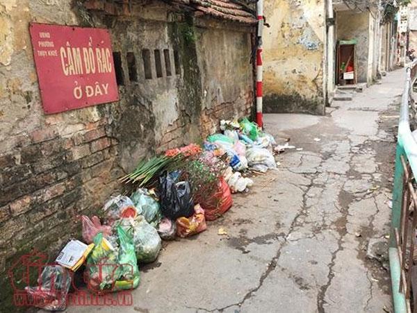 Heavy fines, environmental violations, Vietnam economy, Vietnamnet bridge, English news about Vietnam, Vietnam news, news about Vietnam, English news, Vietnamnet news, latest news on Vietnam, Vietnam