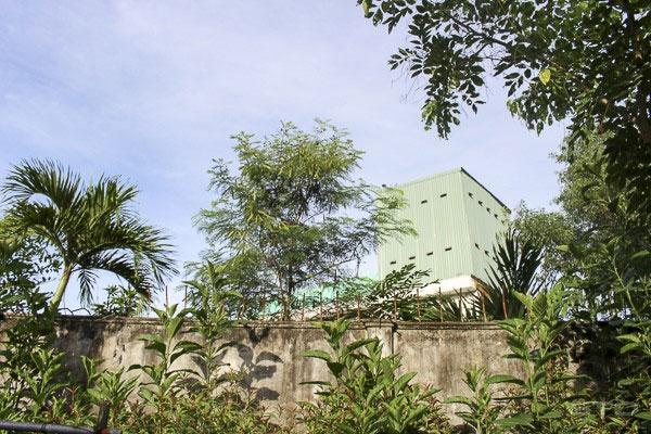 Mekong Delta, curb illegal birdhouses,  potential birdhouses, Vietnam economy, Vietnamnet bridge, English news about Vietnam, Vietnam news, news about Vietnam, English news, Vietnamnet news, latest news on Vietnam, Vietnam