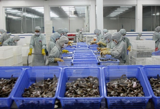 VASEP asks US to review anti-dumping duty on Vietnamese shrimp, vietnam economy, business news, vn news, vietnamnet bridge, english news, Vietnam news, news Vietnam, vietnamnet news, vn news, Vietnam net news, Vietnam latest news, Vietnam breaking news