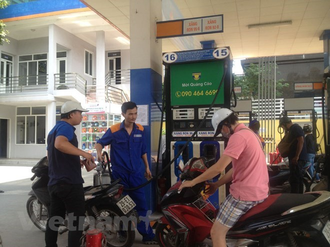 Petrol, oil prices kept unchanged in latest regular adjustment, Vietnamese fruits popular in Japan, New rules set for operation of foreign trade promotion agencies, CPTPP to open up opportunities for Canada-Vietnam cooperation