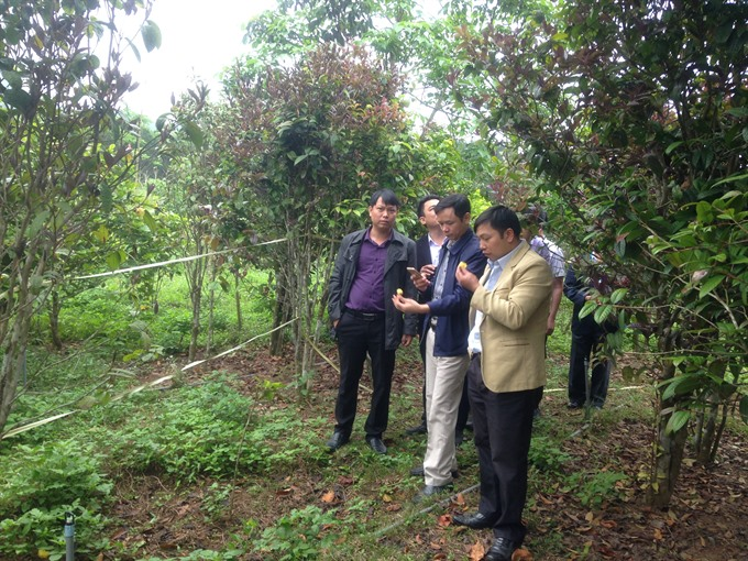 Ethical wild plant collection initiative reports on successes, environmental news, sci-tech news, vietnamnet bridge, english news, Vietnam news, news Vietnam, vietnamnet news, Vietnam net news, Vietnam latest news, Vietnam breaking news, vn news