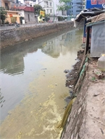 Hanoi's hospital accused of polluting river