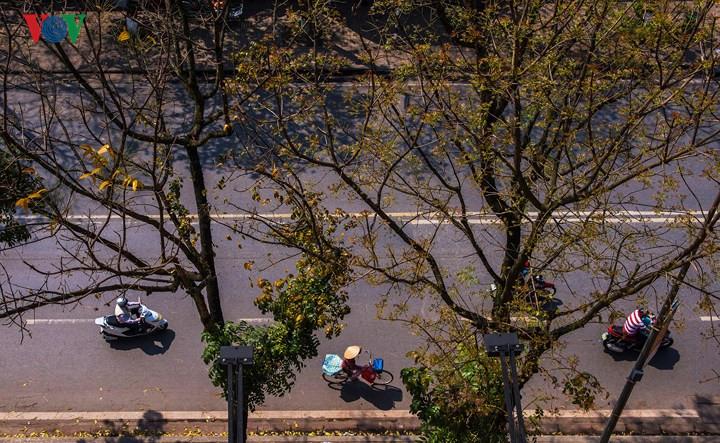 Stunning March scenes of ancient Hue city, travel news, Vietnam guide, Vietnam airlines, Vietnam tour, tour Vietnam, Hanoi, ho chi minh city, Saigon, travelling to Vietnam, Vietnam travelling, Vietnam travel, vn news