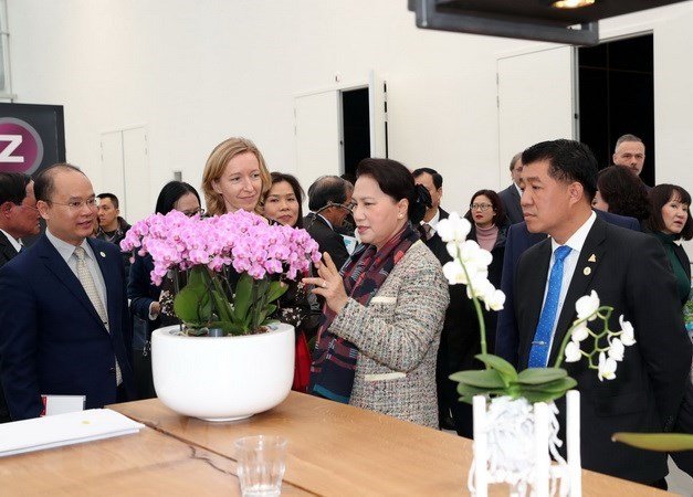 Vietnam, Laos exchange experience in political system operation, Asian audit institutions target sustainable development, Hanoi, Jakarta seek to expand cooperation in urban planning, Vietnam, Hungary augment ties in judicial manpower training