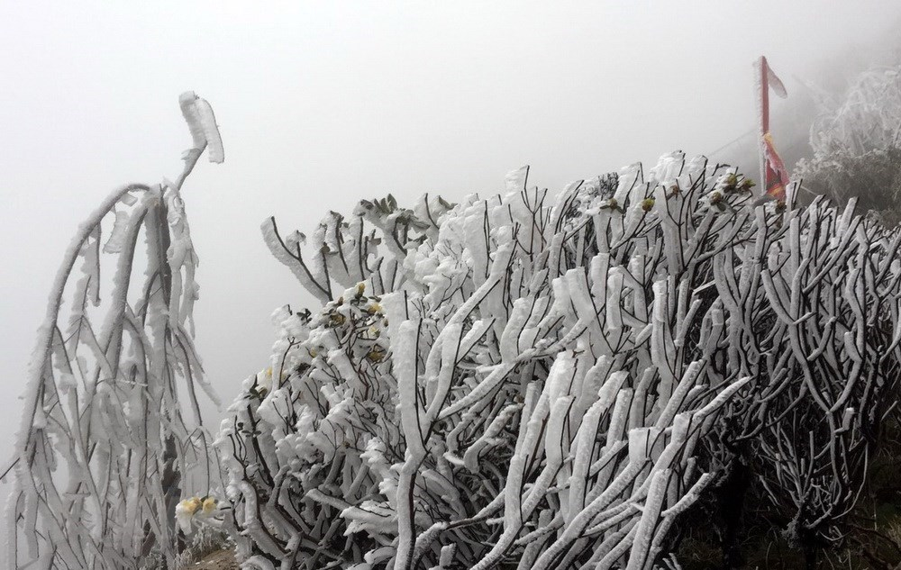 Mount Fansifan covered with ice as cold spell strikes VN's northern region, social news, vietnamnet bridge, english news, Vietnam news, news Vietnam, vietnamnet news, Vietnam net news, Vietnam latest news, vn news, Vietnam breaking news