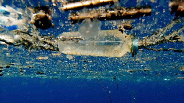 Plastic-hungry enzyme, recycling, commonly polluting plastics