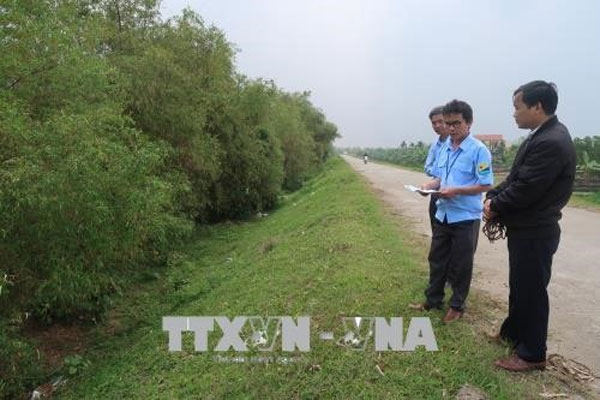Flood prevention, plant new trees, protect important dyke systems, Vietnam economy, Vietnamnet bridge, English news about Vietnam, Vietnam news, news about Vietnam, English news, Vietnamnet news, latest news on Vietnam, Vietnam
