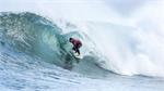 Australian surf event cancelled after shark attacks