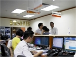 VN-Index dragged down by large-cap stocks