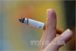 Over 45 percent of Vietnamese males smoke