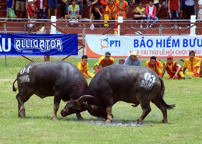 Ministry of culture: Festivals should stop violence