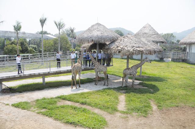 The largest zoo in northern central region, travel news, Vietnam guide, Vietnam airlines, Vietnam tour, tour Vietnam, Hanoi, ho chi minh city, Saigon, travelling to Vietnam, Vietnam travelling, Vietnam travel, vn news