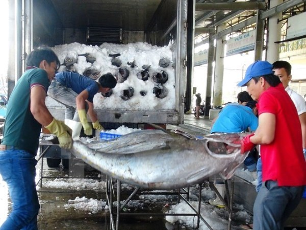 EC delegation to inspect IUU fishing in Vietnam, vietnam economy, business news, vn news, vietnamnet bridge, english news, Vietnam news, news Vietnam, vietnamnet news, vn news, Vietnam net news, Vietnam latest news, Vietnam breaking news