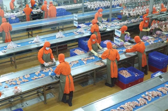 Foreign focus on manufacturing - News VietNamNet