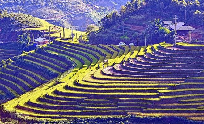 More than 5.5 million foreigners arrive in Vietnam in Jan-Apr, travel news, Vietnam guide, Vietnam airlines, Vietnam tour, tour Vietnam, Hanoi, ho chi minh city, Saigon, travelling to Vietnam, Vietnam travelling, Vietnam travel, vn news