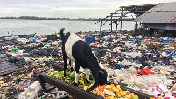 Indonesia, health risks of microplastics, tiny plastic particles, affect human health