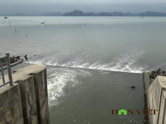 Polluted lakes threaten Ha Long Bay, Vietnam environment, climate change in Vietnam, Vietnam weather, Vietnam climate, pollution in Vietnam, environmental news, sci-tech news, vietnamnet bridge, english news, Vietnam news, news Vietnam, vietnamnet news, V