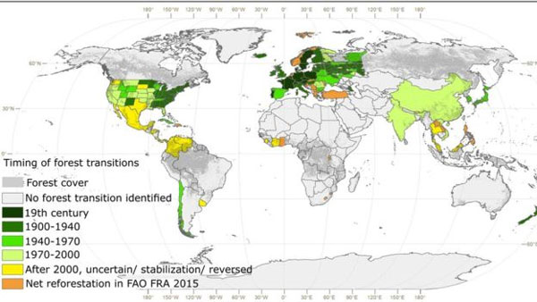 Global forest expansion, 'Feel good' factor