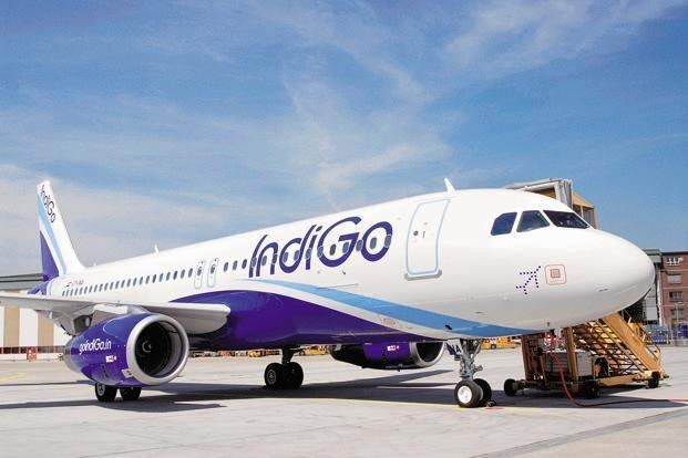 India's largest airline plans new air route to Vietnam, vietnam economy, business news, vn news, vietnamnet bridge, english news, Vietnam news, news Vietnam, vietnamnet news, vn news, Vietnam net news, Vietnam latest news, Vietnam breaking news