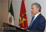 Vietnam, Mexico build new partnership in 21st century: Ambassador