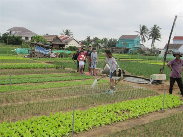 Agri-tourism model, exploring the craft history, Vietnam economy, Vietnamnet bridge, English news about Vietnam, Vietnam news, news about Vietnam, English news, Vietnamnet news, latest news on Vietnam, Vietnam