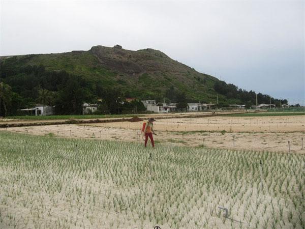 Islanders face limited fresh water in early dry season
